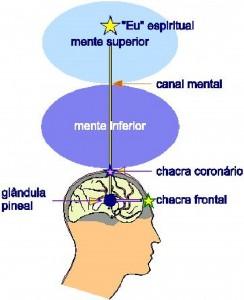 chakra-e-mente